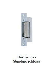 2N Access Control Zubehör Electric Lock 12V/170mA mit Signal